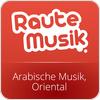 """RauteMusik.FM Oriental"" hören"