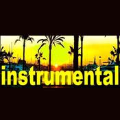 RMNinstrumentalhits