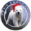 Radio North Pole