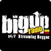 """BigUpRadio Roots"" hören"