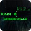 """""""Radio Grenouille 88.8"""" hören"""