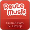"""""""RauteMusik.FM Drumstep"""" hören"""