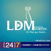 RadioLLDM Fortin