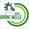 """""""Radio Grüne Welle"""" hören"""