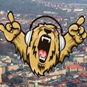 Braunschweiger Radio