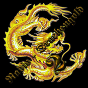 Drachengold2