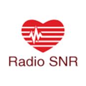 Radio S.N.R