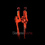 SiameseTwins