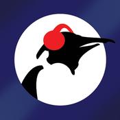 Pinguin Blues