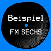 BeispielFM 6