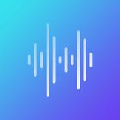 Radio Record Remix