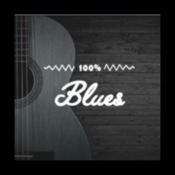 100% Blues - Radios 100FM